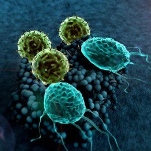 fungal_contaminations_QC_labs