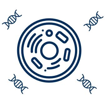 Cell & Gene